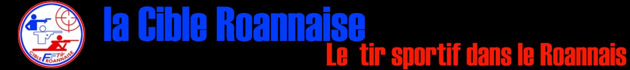 lacibleroannaise.fr